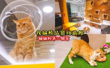 牧貓寵物精品旅館 | 台南貓旅館 全台最大貓旅館 每間都有遊戲跳台 獨立抽風設備 居然還有全省接送服務 根本就是貓貓天堂啊!