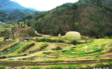 [四國香川]瀨戶內國際藝術祭-2016小豆島新作品搶先看 @王文志老師-橄欖之夢