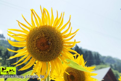2012夏日本中部上信越(新潟、長野、群馬)採訪之旅心得