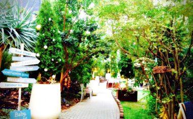 都市裡的綠洲-代代木Village