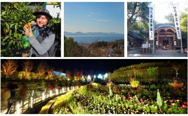 快速規劃愛知蒲郡兩天一夜自駕行程-拉格娜登堡點燈秀、竹島散策、採蜜柑體驗