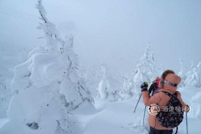 [山形]藏王樹冰私人嚮導健行活動-英日文申請可,來趟不一樣的樹冰之旅吧!