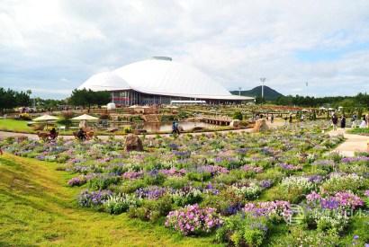 山口夢花博-花與庭園的大型博覽會 親子旅遊的好去處