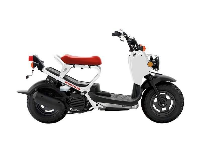 Honda Ruckus Motorcycles For In St