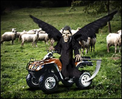 quad bike, farm safety, death