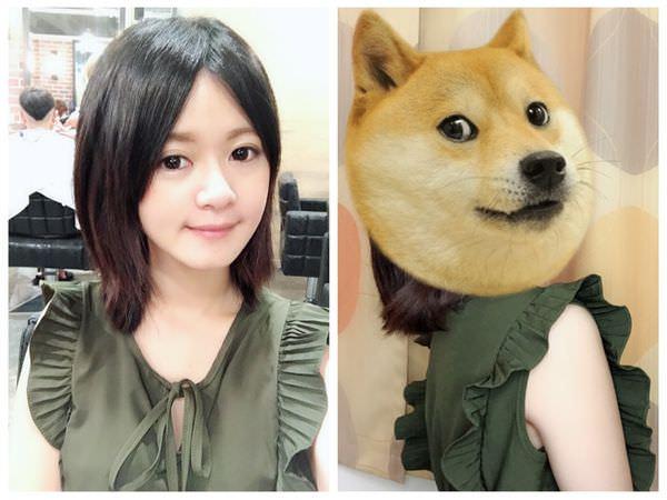 【CINCO髮廊】台北染髮推薦,設計師 Hedy巧手好棒棒,立馬變身楊謹華!