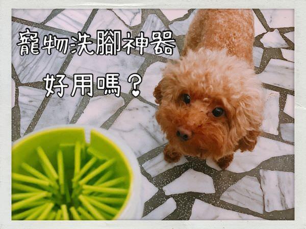 寵物洗腳神器,好用嗎?