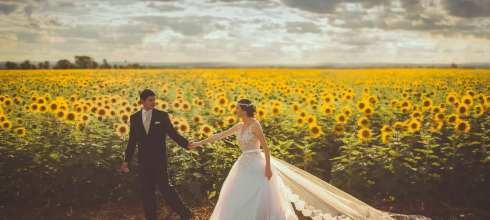 【婚禮籌備時程表】婚禮前半年到前一年準備事項有哪些?(6~12個月準備期)