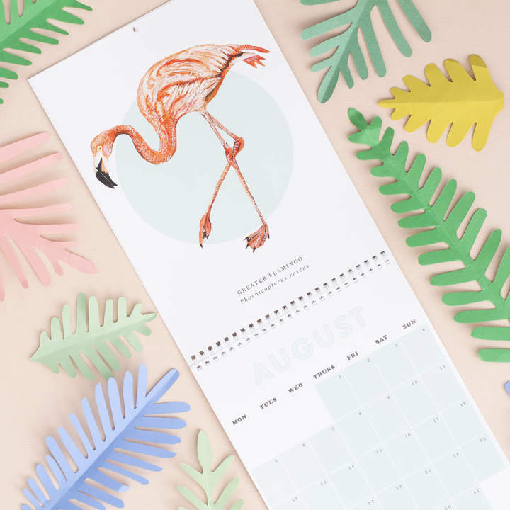 Little Paisley Designs 2019 Birds Of The World A4 Wall Calendar