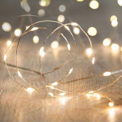 Lights4Fun 100 Warm White Led Micro Fairy Lights