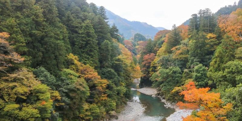 東京近郊奧多摩 自由行行程安排、交通、住宿、花費