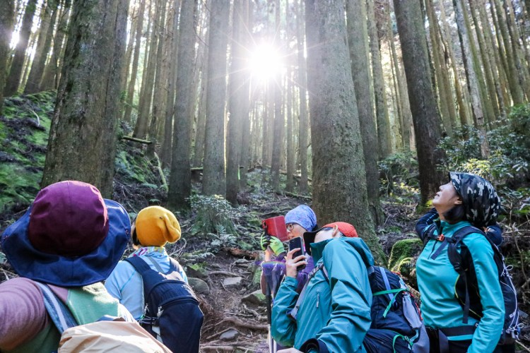 苗栗加里山 大坪登山口上加里山走杜鵑嶺下感想怎麼這麼遠啊
