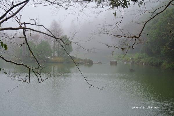 《宜蘭》輕鬆走馬告 明池森林遊樂區 兩天一夜 行程篇