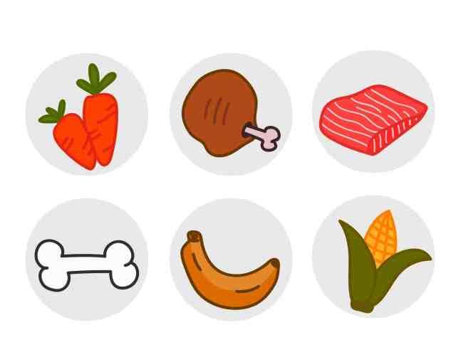 DIY自製紙箱玩具 紙箱圖卡配對食物