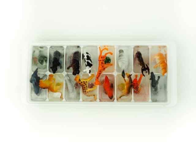 DIY 洗澡玩具-動物冰塊 DIY Animal Ice Cubes