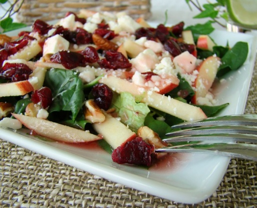 Image result for cranberry apple spinach salad