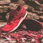 "10月24日発売予定  Livestock x Reebok VENTILATOR ""Maple Leaf"
