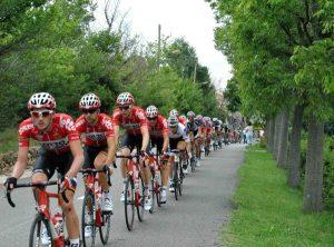 2014年环法自行车赛(Pixabay)