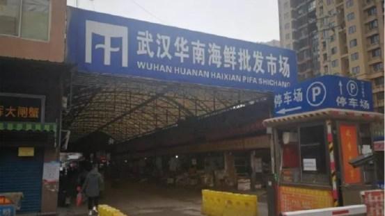 湖北省民政厅新闻被故意曝光?武汉市实际死亡人数可能令人震惊中国共产主义病毒| 新的电晕病毒| 湖北省民政厅| 武汉流行病