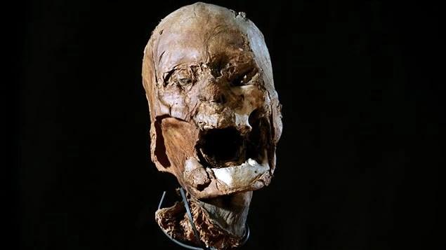 La tête momifiée du roi Henri IV?