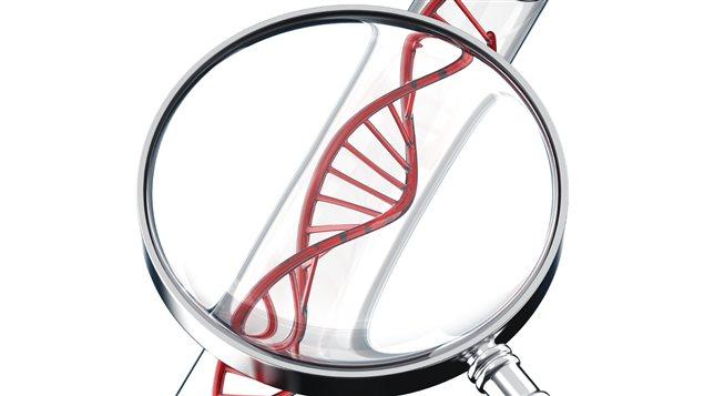 De l'ADN à travers une loupe