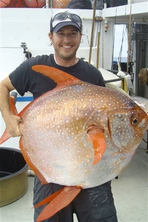Le chercheur Nick Wegner du NOAA montre un opah capturé lors d'une expédition scientifique au large de la Californie.
