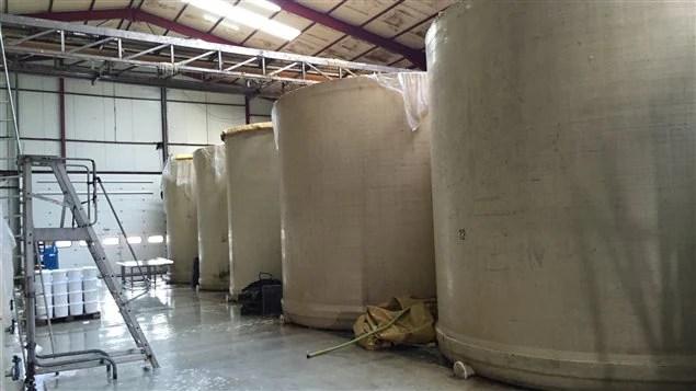 Les cuves de fermentation.
