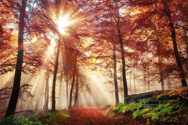 In den Herbst mit dem BUND