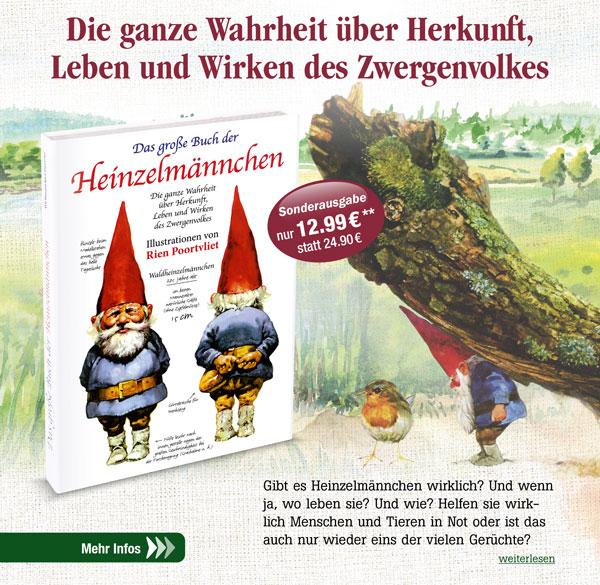 Das große Buch der Heinzelmännchen