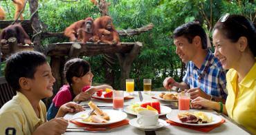 新加坡 | 3種主題玩出不一樣的親子之旅
