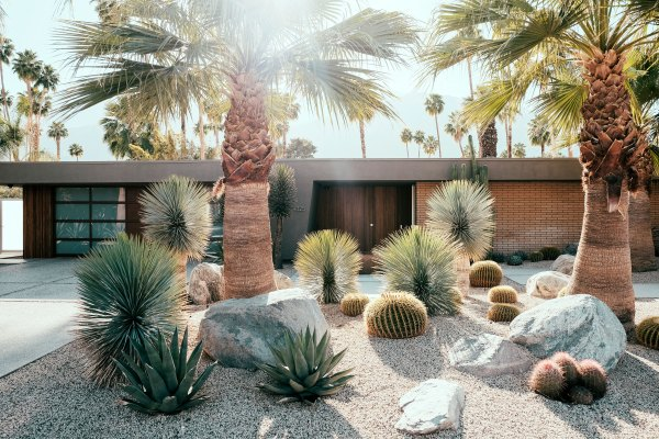 modern palm springs gardens Before & After: Palm Springs Party Pad Becomes a Sleek