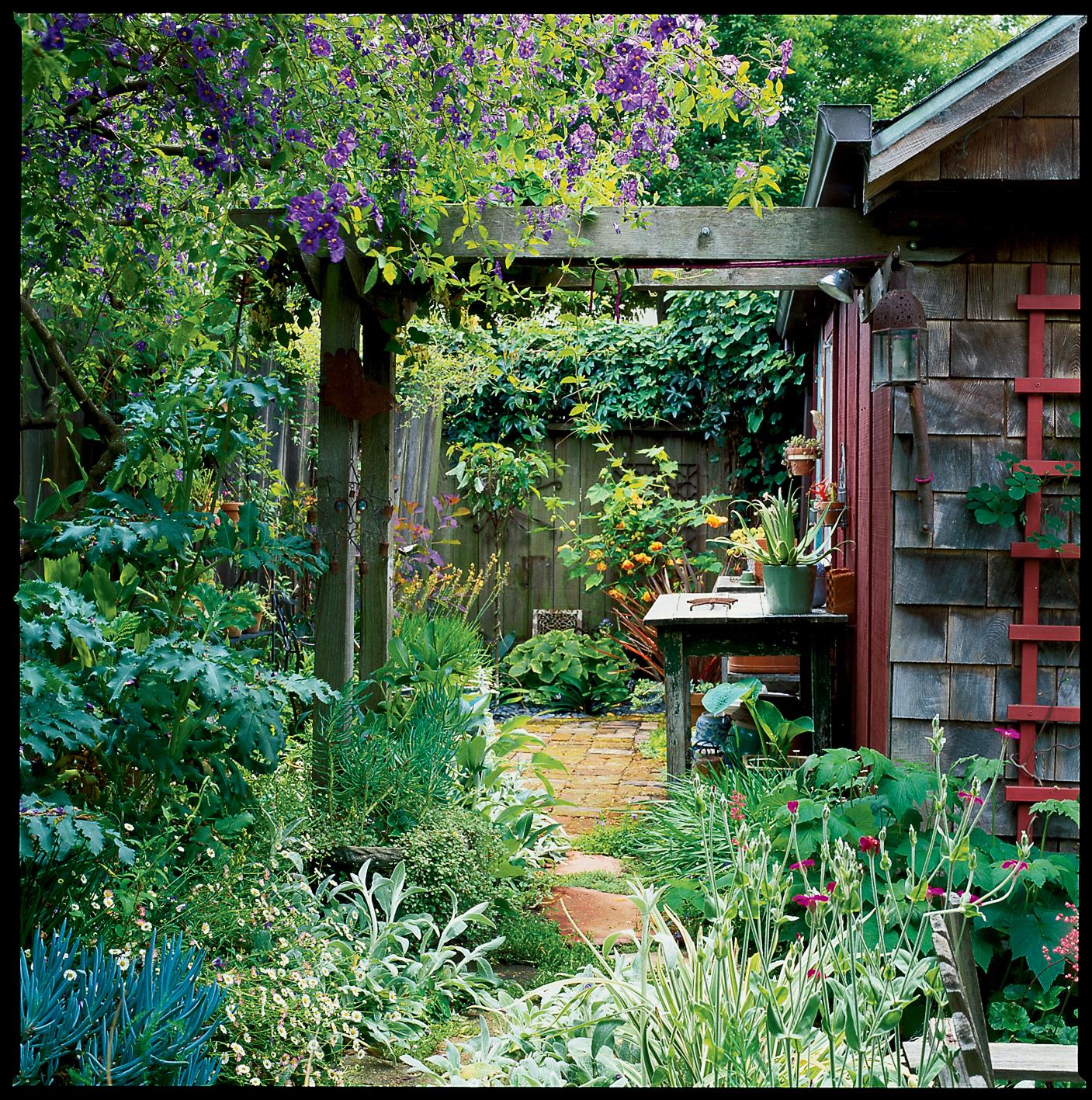 Side Yard Ideas - Sunset - Sunset Magazine on Small Side Yard Ideas id=59558