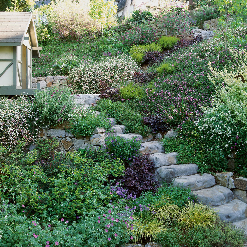 Solutions: Slope Success - Sunset Magazine on Backyard With Slope Ideas  id=81565