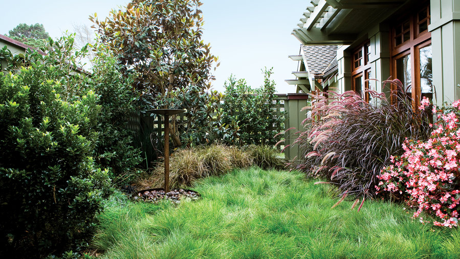 7 Inspiring Lawn-Free Yards - Sunset Magazine - Sunset ... on No Mow Backyard Ideas  id=74696