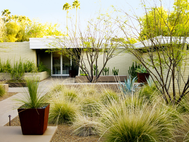 4 Essential Desert Landscaping Ideas - Sunset Magazine on Desert Landscape Ideas For Backyards id=20574