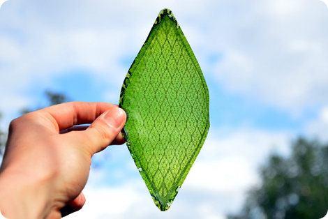 Esta hoja artificial es capaz de producir oxígeno