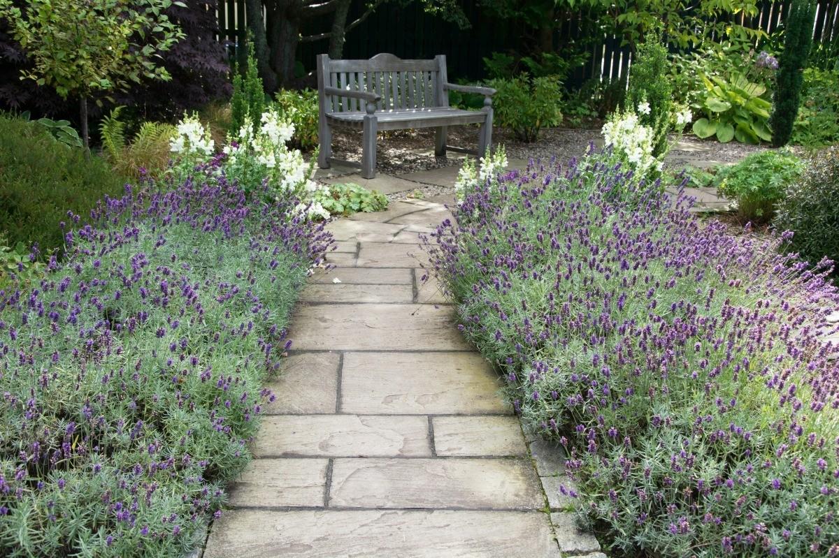 Garden Path Ideas | ThriftyFun on Patio And Path Ideas  id=76860