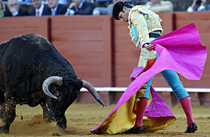Spains Bullfighters Turn on One Another