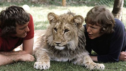 A Lion Called Christian: Two Men and Their Very Large Cat