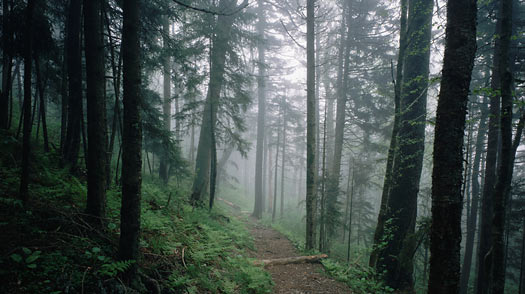 A Brief History of the Appalachian Trail