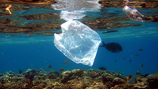 Expedition Sets Sail to the Great Plastic Vortex