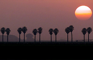 Top 10 Most Polluted American Cities - Fresno, California