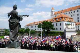 Opponents of vaccination met again in front of the parliament: VIDEO Czech anthem defied father and police