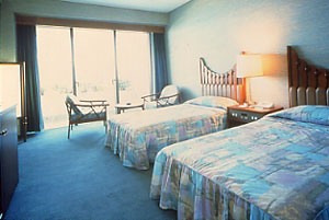 【新幹線付プラン】指宿温泉 指宿いわさきホテル(JR九州旅行提供)/客室