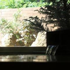 湯の宿 アウザ猪苗代/客室