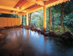山中温泉 白鷺湯たわらや/客室