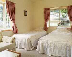 プチハウス 南の家/客室