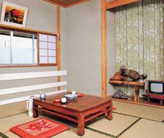 熊の湯 隆陽館/客室