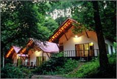森の小さなリゾート村 桜清水コテージ/外観