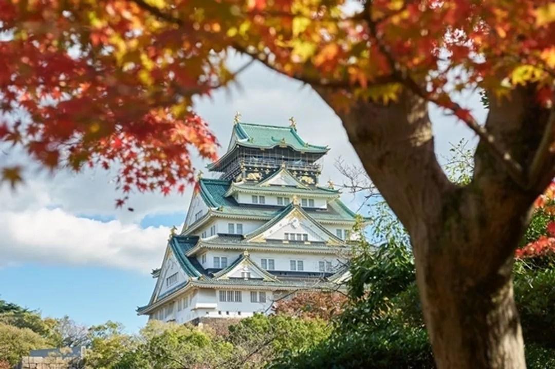 【2018紅葉祭】大阪最「紅」賞楓勝地8選!@Japan Foodie - 日本美食旅遊指南 (51913) - 旅行酒吧